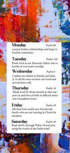 Phone wallpaper for week 2 of the November Prayer Challenge